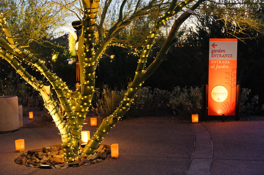 desert botanical garden phoenix for instants